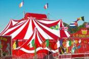 Il circo e l'arte del cross-selling